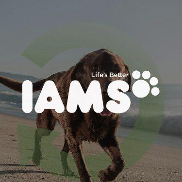 iams-750x750